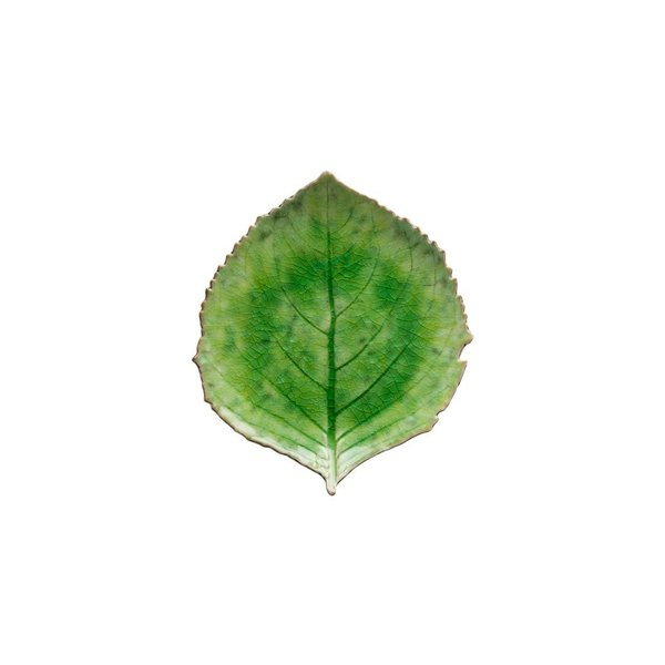 Costa Nova Hydranchea Leaf small 17 cm
